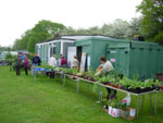 The 2012 plant sale is nearly ready to begin.